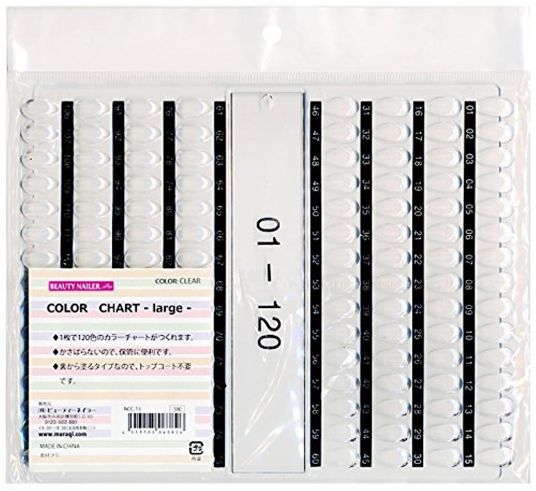パスオープナー寛大さカラーチャート ラージ(NCC-13)
