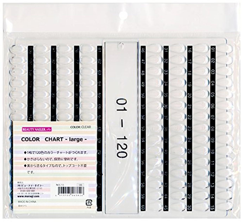マウス体ポジティブカラーチャート ラージ(NCC-13)
