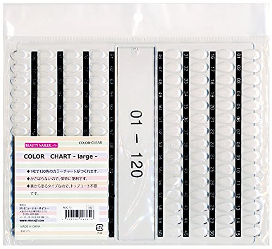 永遠のアウター筋カラーチャート ラージ(NCC-13)
