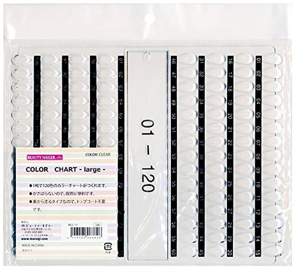 納屋予言する記念品カラーチャート ラージ(NCC-13)