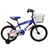 BTM(ビーティーエム) 子ども用自転車 ZX-112 軽量 16インチ 軽量 PL保険加入済み (ブルー)