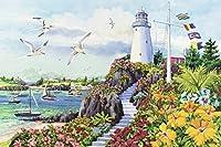 Ravensburger Coastal Paradiseパズル3000ピース