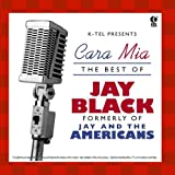 The Best of Jay & the Americans