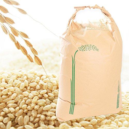 【新米販売中】 30年 福島県産 コシヒカリ 玄米 米 20kg Brown Rice