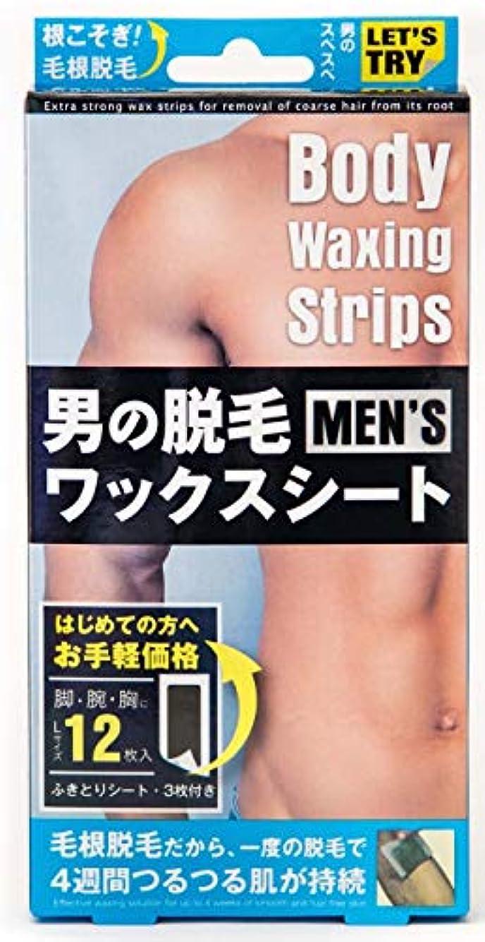 男の脱毛ワックスシート 12PCS