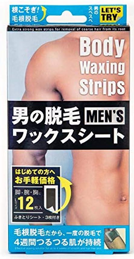 香港消化器理容師男の脱毛ワックスシート 12PCS
