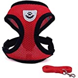 Yvetel Pet Vest Harness Small Dogs Cats Leash, Red, Breathable Mesh Pet Leash Collar, Comfortable & Adjustable, 3 Size Selection (S)