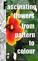 Fascinating flowers from pattern to colour