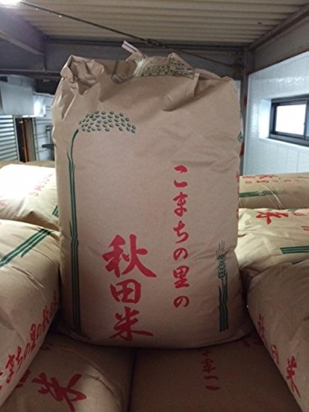 ブロック団結する導出令和元年産 秋田県産 あきたこまち 玄米30kg (10×3)
