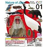 ネイチャーテクニカラー Nature Of Japan 日本のいきもの 01 全10種セット