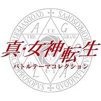 激しい怒り【真・女神転生 STRANGE JOURNEY】
