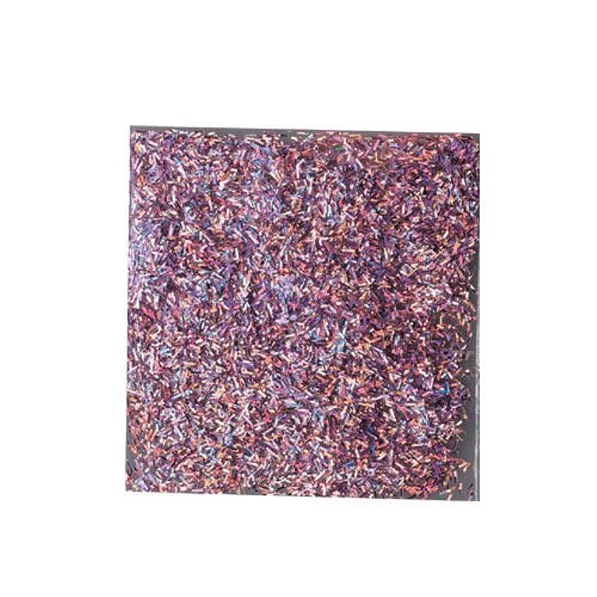 美的はしごぼかすピカエース ネイル用パウダー チャンキーホロ #888 パープル 0.5g