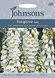 JOFL 英国ジョンソンシード Digitalis purpurea alba White. ジギタリス(フォックスグローブ)パープレア・アルバ・ホワイト
