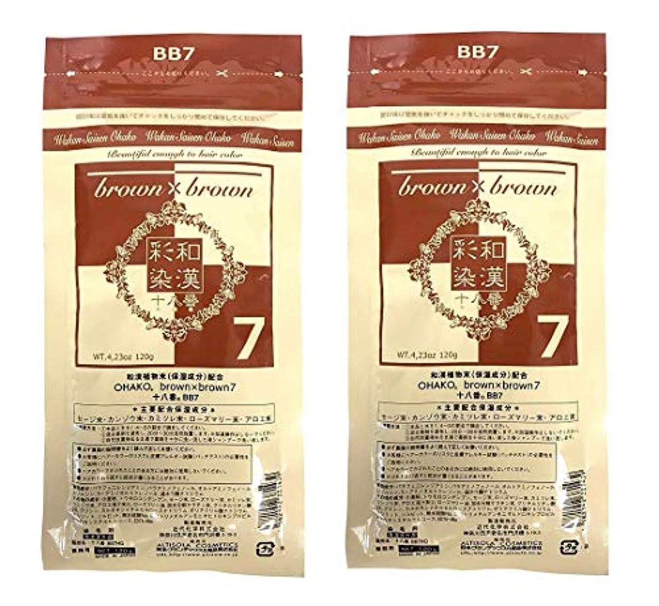電報下向き赤面【2個セット】グランデックス 和漢彩染 十八番 120g BB7