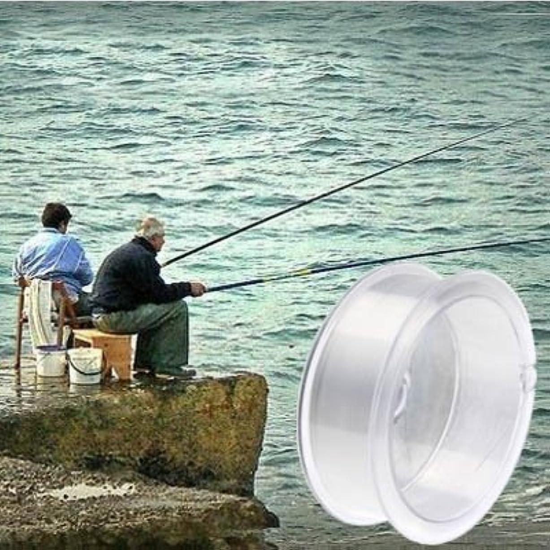 公平な有益苛性WTYD アウトドア釣り用品 100m超強力3.5#0.30mm 8.4kg川釣り専用の鷹釣りライン アウトドアに使う