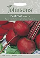JOVE 英国ジョンソンズシード Beetroot Perfect 3 ビートルート・パーフェクト・3