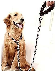 Rant Bell 中型犬 用 リード 首輪 チェーン 丈夫 で おしゃれ 【 トイレ に流せる エチケット袋付 】 黒 M