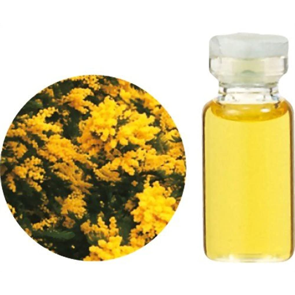 香水広大なフォーカス生活の木 C 花精油 ミモザ アブソリュート (25%希釈) エッセンシャルオイル 3ml