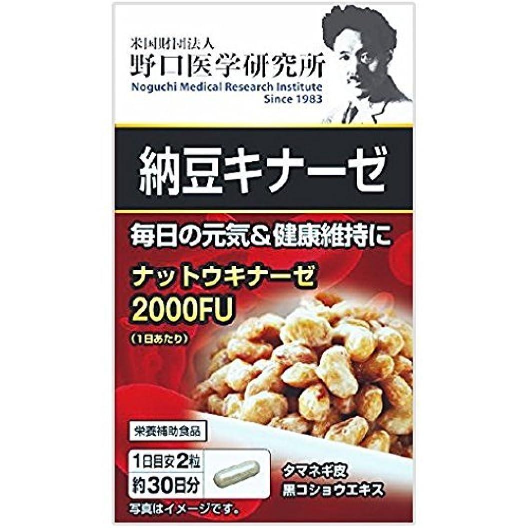 コンドーム明示的にマート野口医学研究所 納豆キナーゼ 60粒×20個セット
