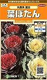 サカタのタネ 実咲花7920 葉ぼたん 丸葉系混合 00907920