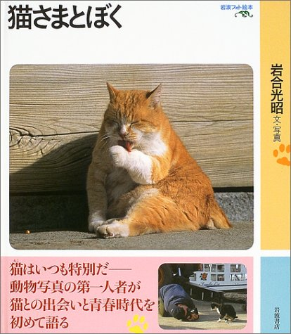 猫さまとぼく (岩波フォト絵本)の詳細を見る