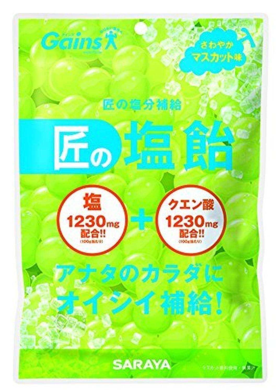 指導するオーチャードコモランマ【お徳用3セット】匠の塩飴 マスカット味 100g×3セット
