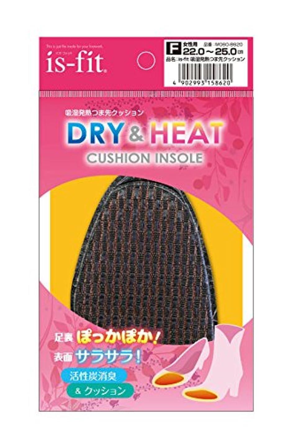 スクランブル断線元気なis-fit(イズフィット) 吸湿発熱つま先クッション 女性用 フリー(22.0cm-25.0cm) ブラック