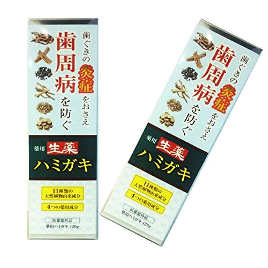 自由お茶ふける生薬 はみがき 薬用 歯磨き 大容量120gタイプ 医薬部外品 ハミガキ 2本セット