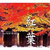 紅葉 ヒ-リング・オータム