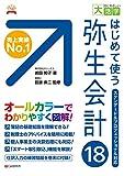 目にやさしい大活字 はじめて使う 弥生会計18(エクセレントブックス版)