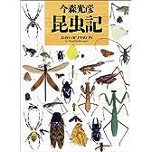 昆虫記 (写真記シリーズ)