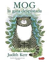 MOG EL GAT DESPISTAT