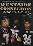 Gangsta Nation Live [DVD] [Import]