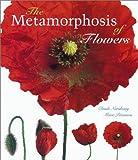 The Metamorphosis of Flowers 画像