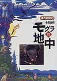 モグラの地中 (森の新聞)
