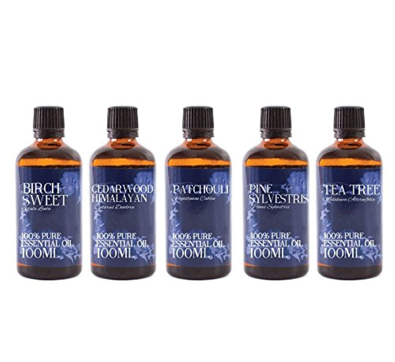 ごめんなさい思われる個人的にMystic Moments | Gift Starter Pack of 5 x 100ml - Woodland - Essential Oils
