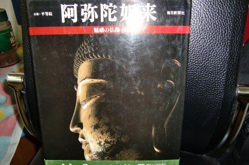 阿弥陀如来(魅惑の仏像 8)