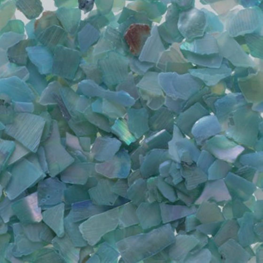 ニンニク進化留め金ピカエース ネイル用パウダー シェルグレイン L #338 ライトブルー 1g