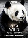 パンダの大冒険 動物園の挑戦! (吹替版)