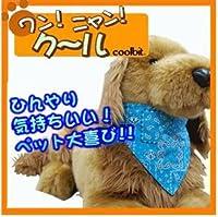 【クールマックスのペット用クールバンダナ! ワン!ニャン!クール(オレンジ/Mサイズ)】