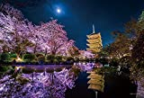 ジグソーパズル 月夜に咲く (京都) 1000ピース (26x38cm)