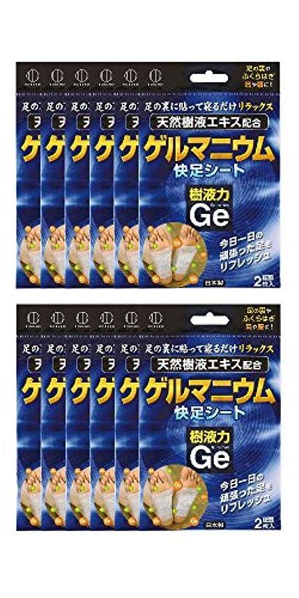 感嘆ヒントいちゃつく樹液力 ゲルマニウム 快足シート (12個セット) 2334