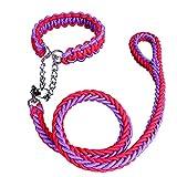 Zhaozhe ペット用品 犬用伸縮リード ロープスリップ 牽引ロープ リーシュ 安全丈夫 お散歩に お出かけ用 中大型犬用 長さ1.2m