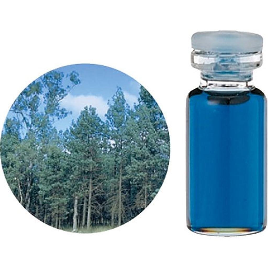生活の木 C ブルー サイプレス エッセンシャルオイル 10ml