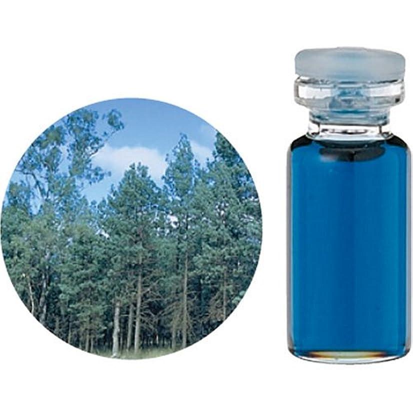 慣性興奮する抽象化生活の木 C ブルー サイプレス エッセンシャルオイル 10ml