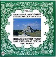 Mexican Landscapes 1