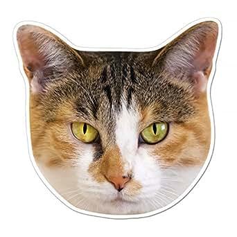 kmag 猫の顔マグネット 三毛ねこ