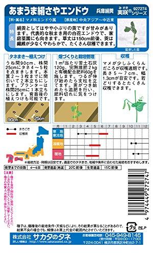サカタのタネ 実咲野菜7274 あまうま絹さやエンドウ 兵庫絹莢 00927274