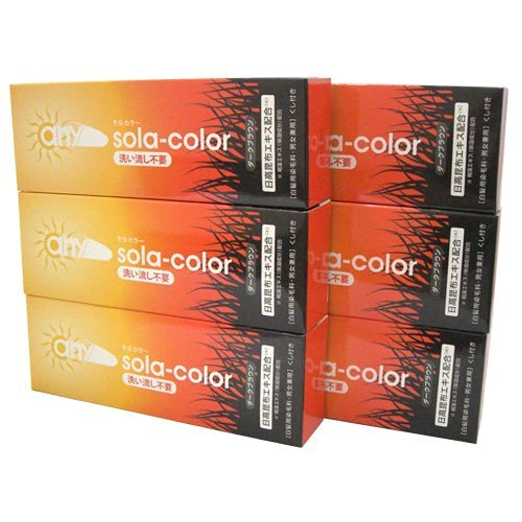 凶暴な知り合いになる力強いそらカラー (sola-color) 光ヘアクリーム 80g ダークブラウン x6個セット