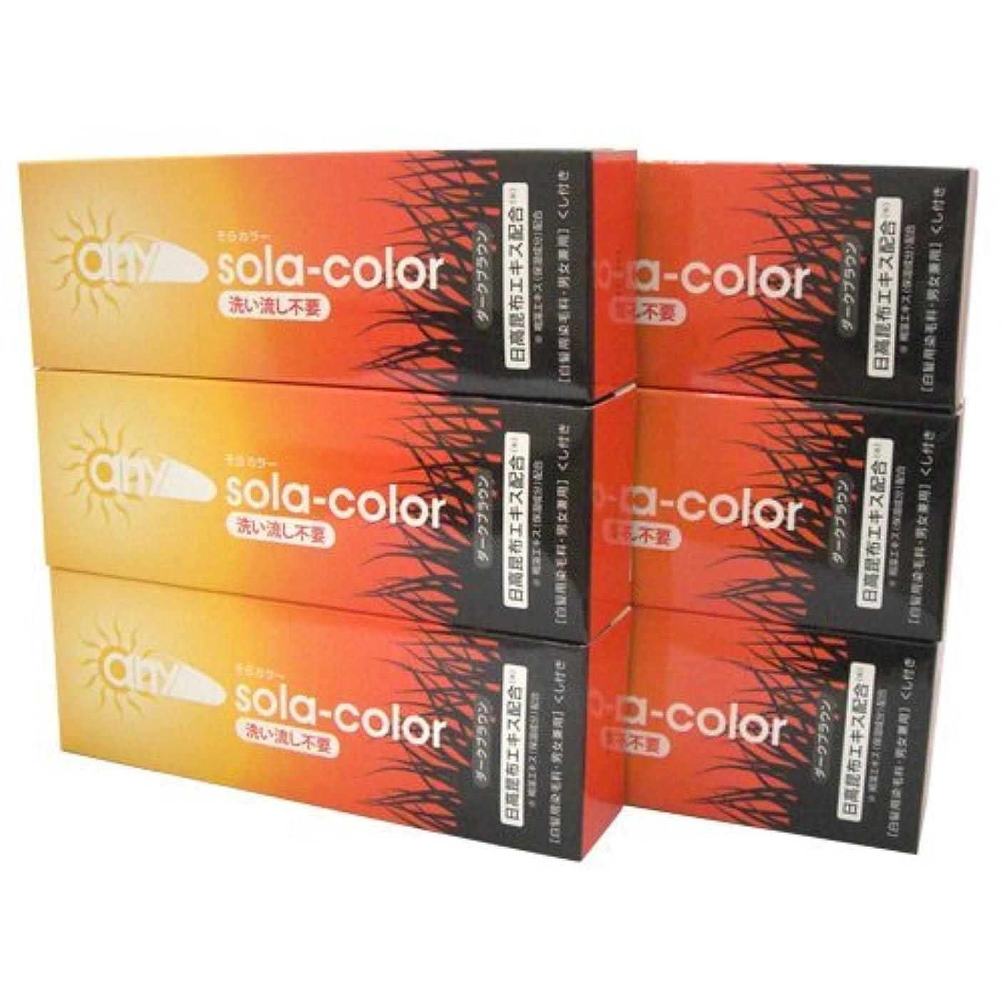 収束罪悪感ワイプそらカラー (sola-color) 光ヘアクリーム 80g ダークブラウン x6個セット